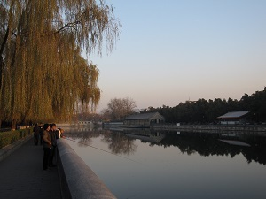 179-20161128beijing.JPG