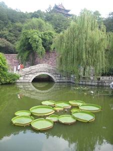 75-20070829China-uhan.JPG